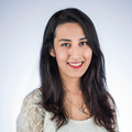 Shadi S. - MCAT Physical Sciences tutor